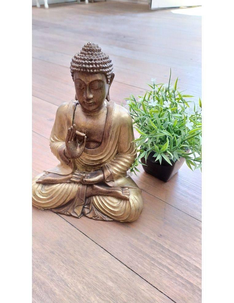 Buda Siddharta Gautama con mudra Vitarka (protección) Origen: Indonesia