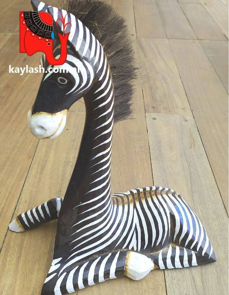 Zebra sentada Origen: Indonesia